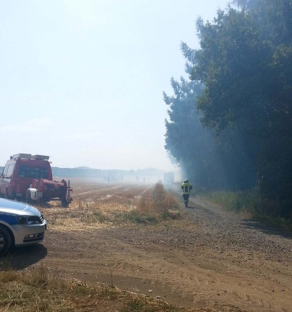 20150717 Flächenbrand Polcher Holz 1