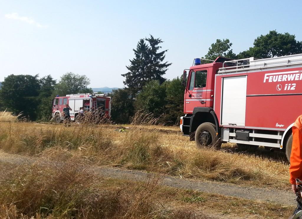 20150717 Flächenbrand Polcher Holz 2